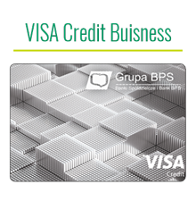VISA-Buisness-Credit